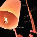 Happy New Year 2014 from Chiang Mai – Lentern Festival