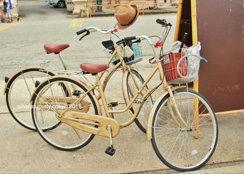 georgetownbike