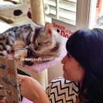 First CAT Cafe di Penang
