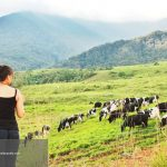 Ayo ke DESA Farm – a nice place to be.