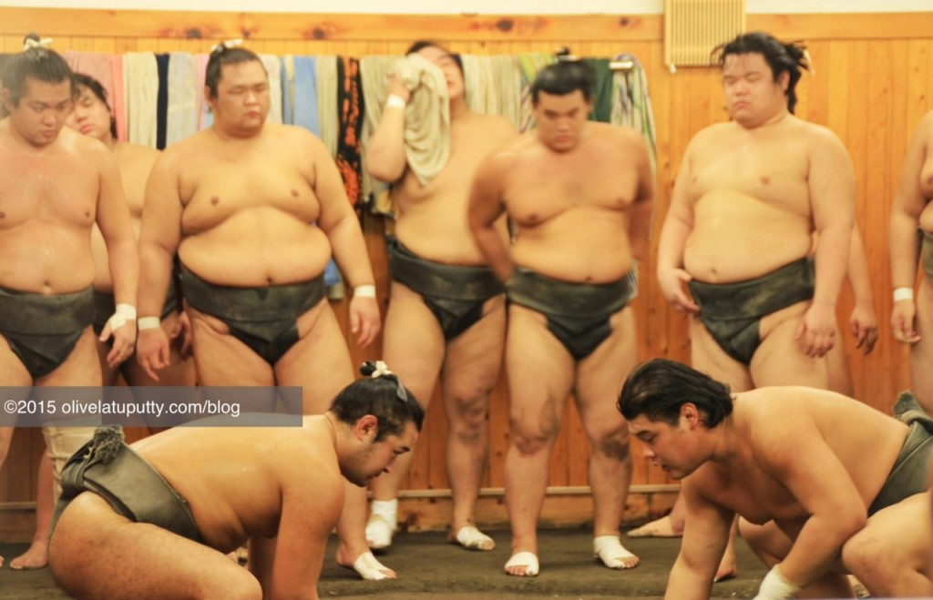 nonton sumo di jepang
