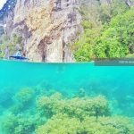 Perjalanan ke Pantai Ora Maluku