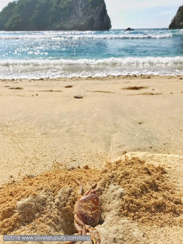 liburan cantik di nusa penida
